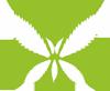 Slovenska konoplja, CBD smola in konopljine kapljice